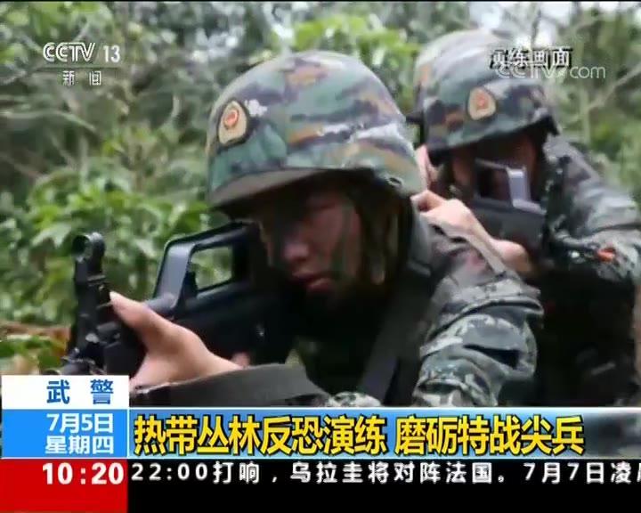 武警 热带丛林反恐演练 磨砺特战尖兵